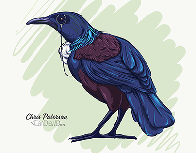 NZ Bird Collection