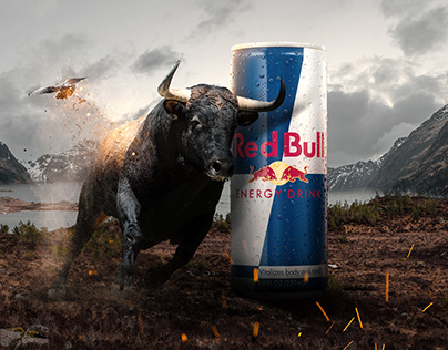 The Power Has A name - RedBull