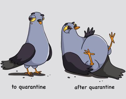 Comic. Pigeon. Character design