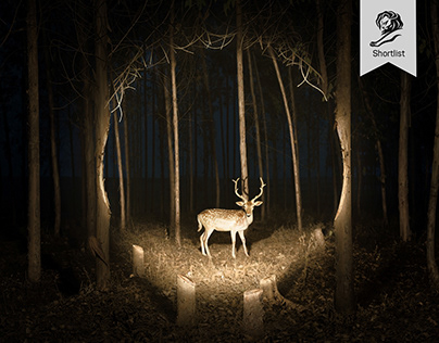 ENERGIZER FLASHLIGHT | Deer / Lightbulb / Couple