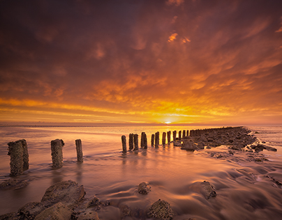 World Heritage Site Wadden Sea