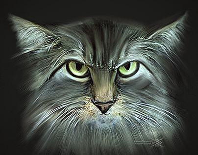 Digital Art – Angry cat