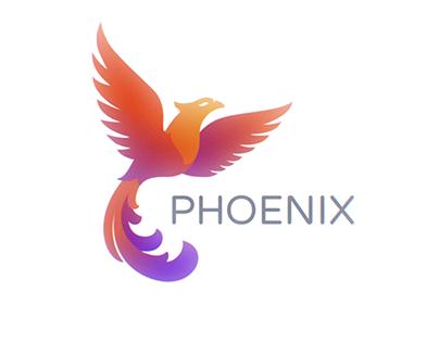 X PHOENIX INTRO | [DIR CUT] X
