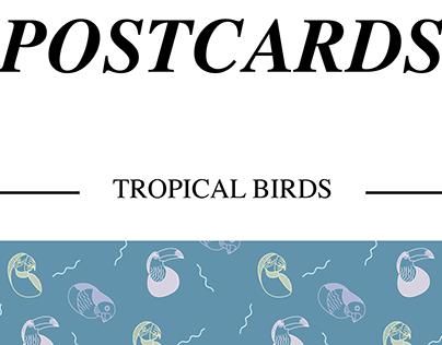 POSTCARDS - Tropical Birds