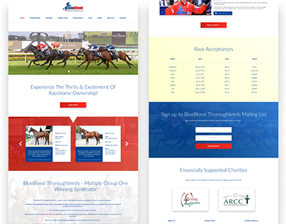 Blueblood Thoroughbreds - Racehorse Syndication Shares