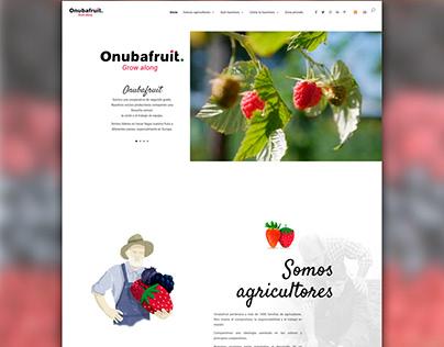 Diseño web Onubafruit
