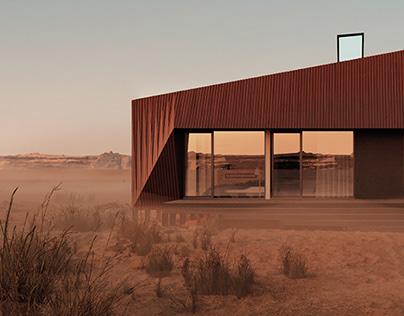 The Two Skins House/DESERT