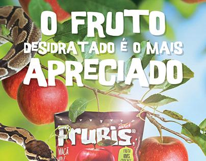 FRUBIS - O Fruto Desidratado