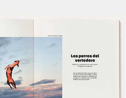 Bocado/ Revista