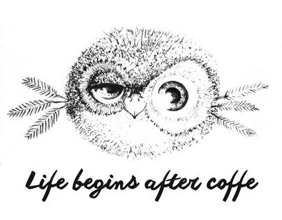 BIRDS (illustration)