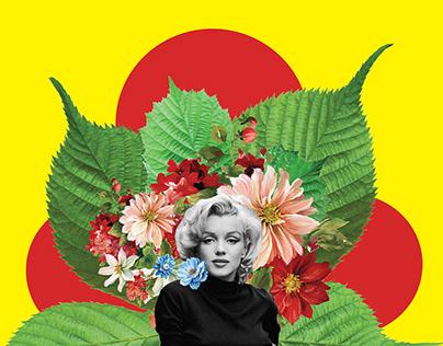 collage art /marilyn-audrey-sofia
