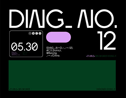DING_NO.12 Typeface