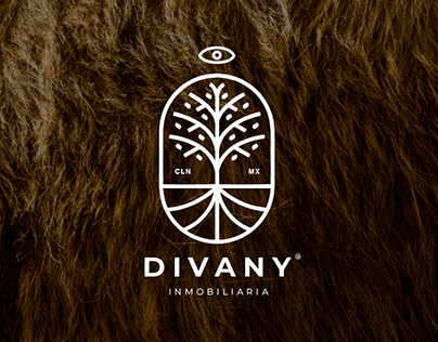 Divany® Real State Agency Branding