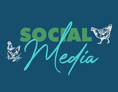 El-debany Social Media
