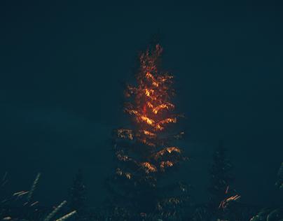 ..forest magic