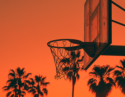 Palm Trees and Basketball