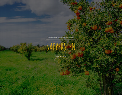Sappersien website