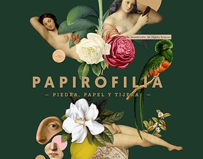 Collage_ papirofilia, nueva imagen