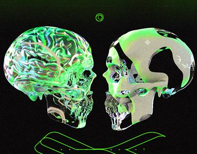 skull is ...