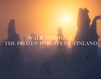 A Walk Through the Frozen Forests of Finland