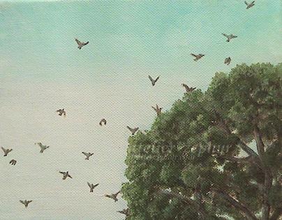 """Big tree and flying flocks"""