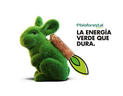 Biomasaforestal