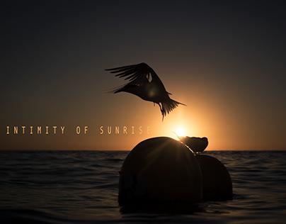 Intimity of sunrise
