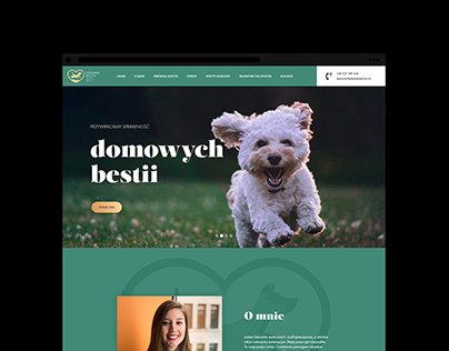 Sprawna Bestia / Web design