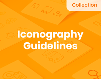 Iconography Guidelines and Style Guides