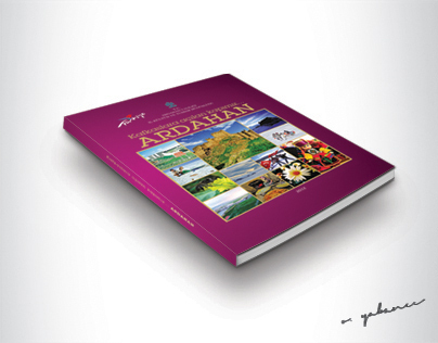 introductory book