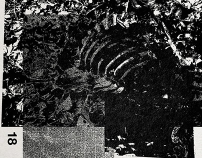 VRNA - Dead Deer Dream // CS, 2015. III Arms Records