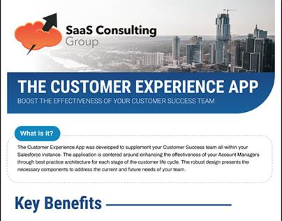 Customer Experience App Summary Brochure Design