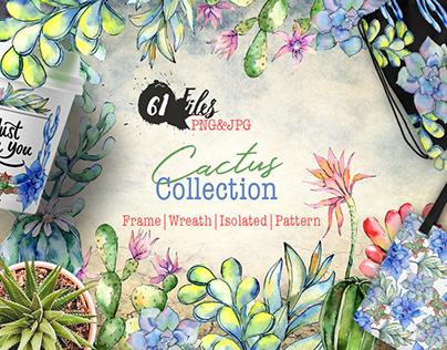 Cactus watercolor PNG
