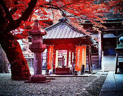 Japan Infrared 2