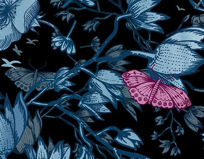 Fluttering through the jungle of life animation