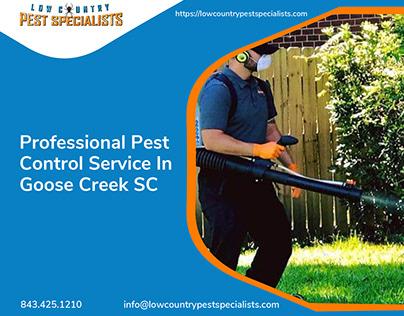 Professional Pest Control Service In Goose Creek SC