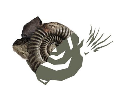 Палеонтологический музей им. Ю.А.Орлова