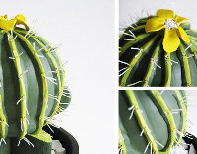 MUCTUS! (munny cactus)