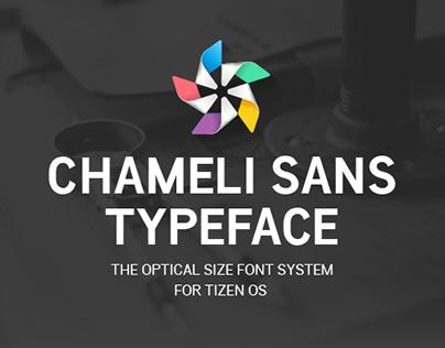 Chameli Sans Typeface