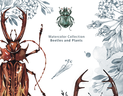 Watercolor beetles and plants collection.