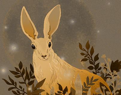 Animation of moon rabbit
