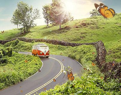 Butterfly Road Trip