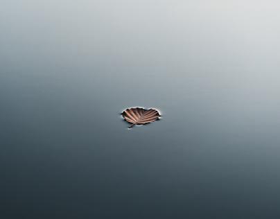 Details in Water - Finland