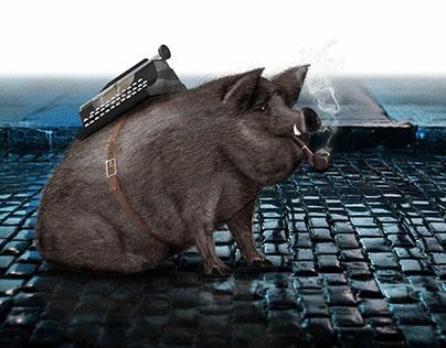 Digital pig illustration for website project