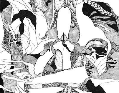 Bones and Dimensions II