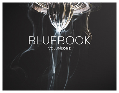 Project Bluebook Volume One: