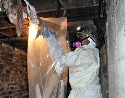 Mold Removal Fairfield County