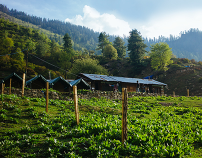In the lap of mother nature: Parvati Valley