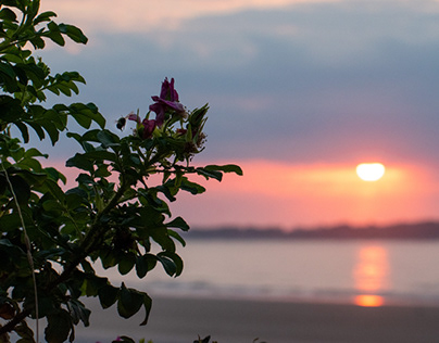 Sunrise to Sunset in Maine