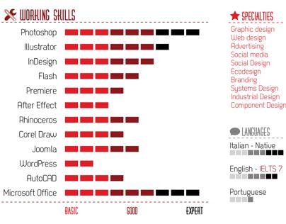 Infographic Resume - Curriculum Vitae